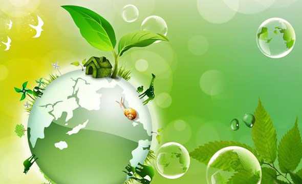 An Ecological Responsibility